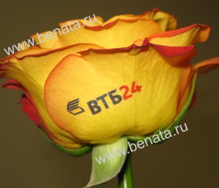 Фото и печать на цветах 17