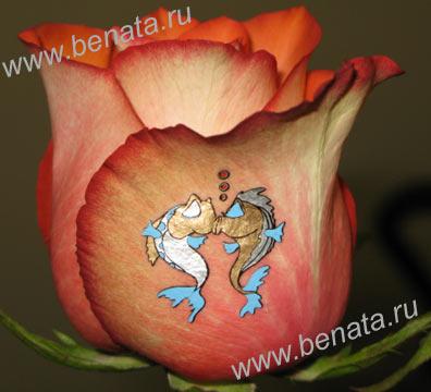 Шелкографические наклейки на цветы